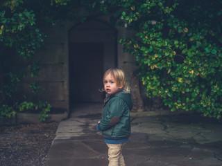 Little toddler in a garden