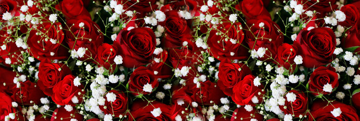 Natural Dark Red Ruby Roses Background Wallpaper