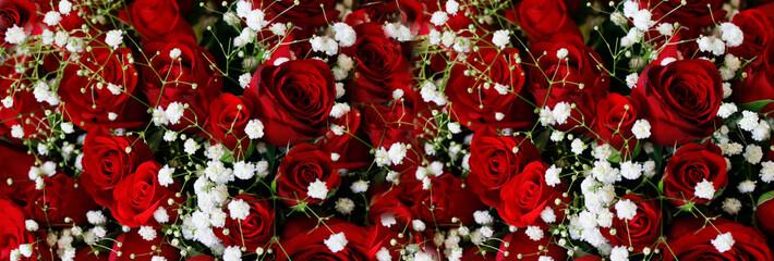 Natural Dark Red Ruby Roses Background Wallpaper Fotoväggar