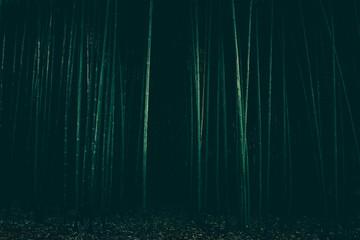 dark scary forest