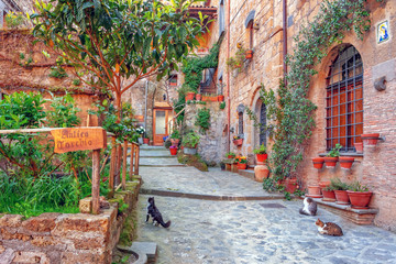Fototapeta Beautiful alley in old town, Italy, Europe