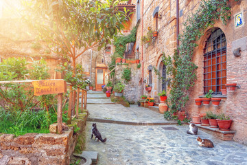 Wall Mural - Beautiful alley in old town, Italy, Europe