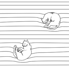 Sleeping cats  pattern. Top view