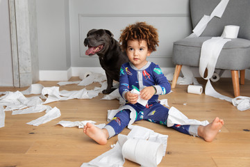 Boy and dog play with toilet paper rolls
