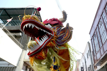 A dragon head is seen as Chinese Lion dance is performed during the Chinese Lunar New Year in Lima