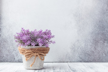 Tuinposter Lavendel Small purple flowers in gray ceramic pots on stone background Rustic style
