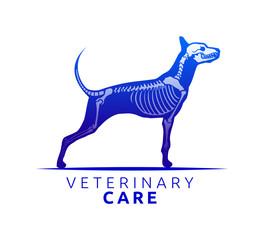 Veterinary Care Emblem Design, Bone Scan Dog Care vector illustration