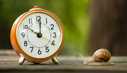 Time management concept - web banner of retro orange alarm clock and a slow snail