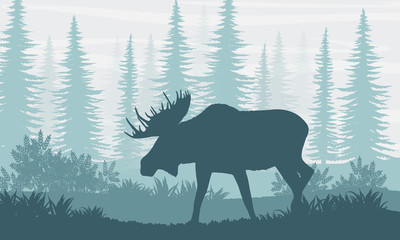 Silhouette. Elk with big horns on the background of Canadian fir trees. The nature of Canada, USA, Scandinavia and Europe. Realistic vector landscape.