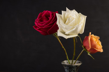 Three roses closeup image in small marble vase on black background