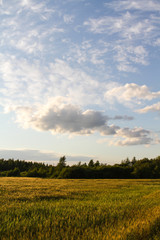 Papiers peints Nature sunset over green field