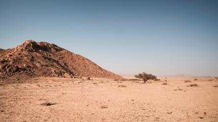 Namibia Landscape Panorama, Savanne