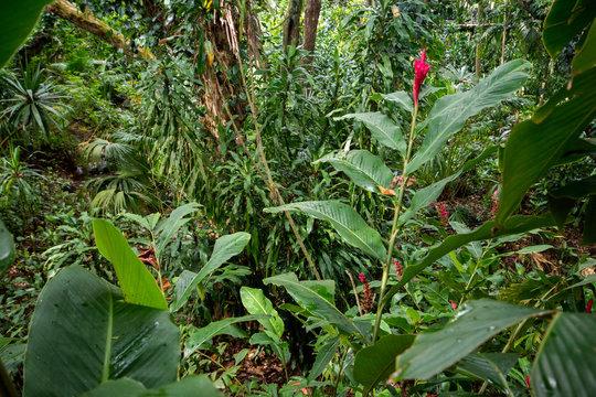 La Vanille Natural Park Mauritius