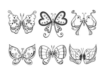 vector butterflies set