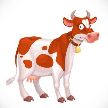 Cute cow farm animal in collar with a bell isolated on white background