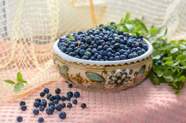 Freshly picked blueberries. Healthy nutrition.