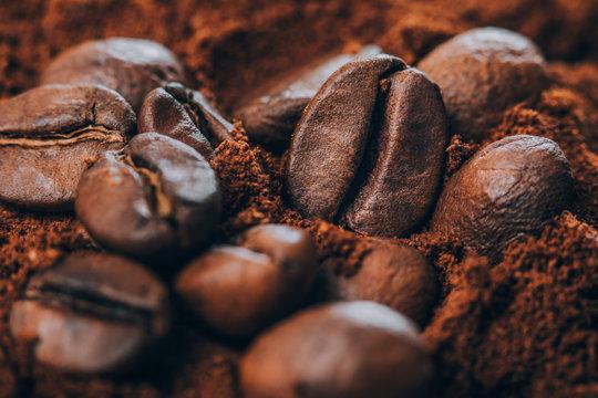 Macro photo of Coffee beans and ground coffee powder