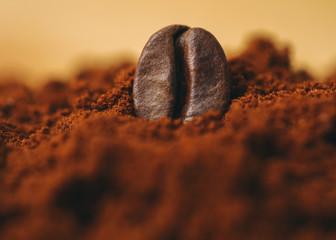 Coffee bean in ground coffee powder