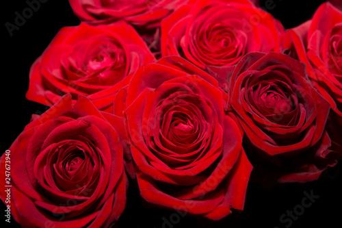 Fleur Rouge De Saint Valentin Stock Photo And Royalty Free Images