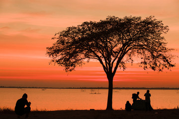The silhouette of the tourist group is tent during the sunset.Tent, camp and tree during sunset or sunrise,The silhouette of trees and camping of tourists