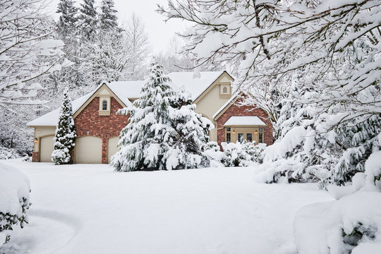 Winter snowstorm brings unexpected white blanket to Western Washington