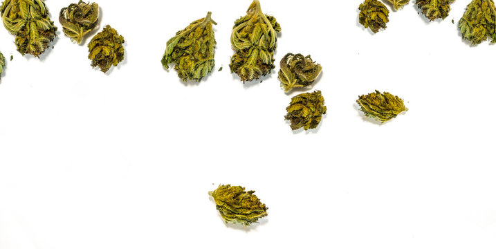 Flat lay of Cannabis flower buds on white background