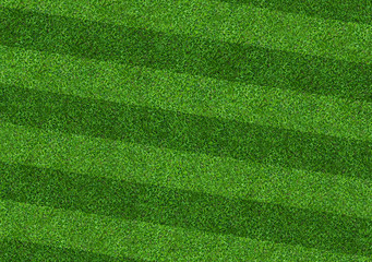 Abstract green grass field background. Green lawn pattern and texture.