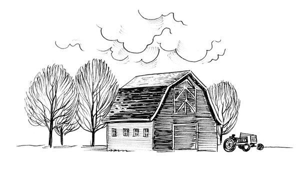 Old barn and trees. Ink black and white illustration