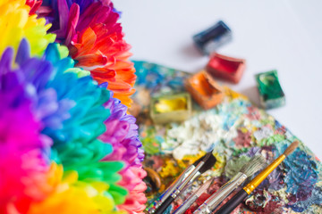 multi-colored chrysanthemums on the palette with paints and brushes of the artist