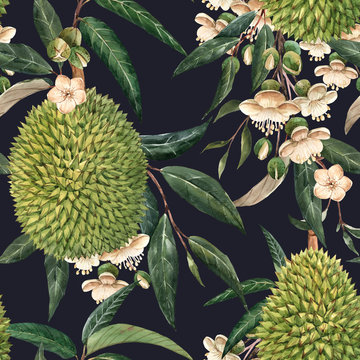 Watercolor durian tropical seamless pattern