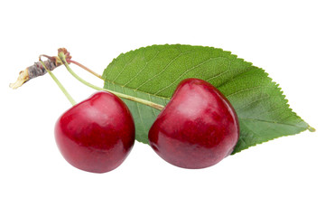 Cherry with leaves isolated on white background