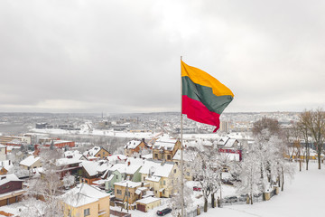 Lithuanian flag in the wind