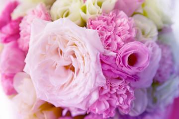 Soft color Roses Background