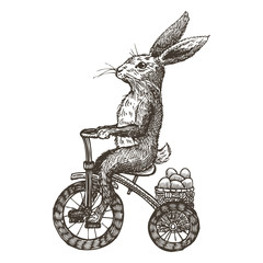 Hand drawn bunny riding tricycle with Easter eggs, vector