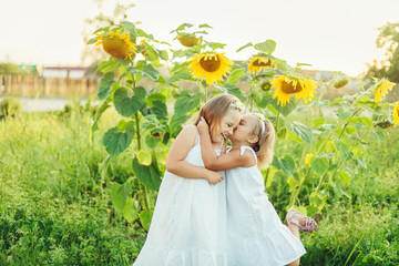 Summer positive portrait of cute sisters hugging in green field of sunflowers. Friendship, nature, childhood concept