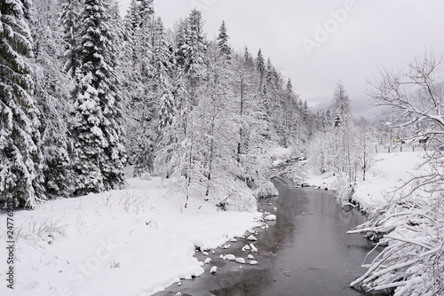 Fototapete Partially frozen river running through a snowy forest in winter