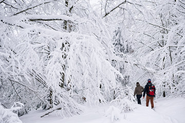 Fototapete - Couple walking along a snowy path while out hiking