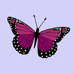 Purple Winged Butterfly Vector - Monarch Digital Design