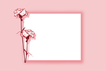 Natural floral background of bright flowers carnation