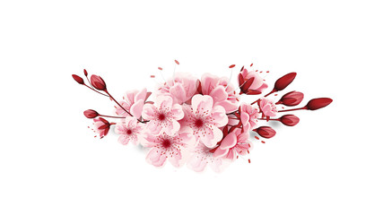 vector cherry blossoms sakura flowers  isolated on white background, Flower illustration, lovely greeting cards ,invitation,brochure,banners,posters,elements