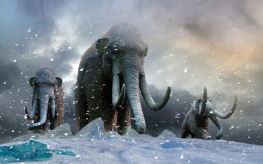 herd of mammoths in the wild render 3d Wall mural