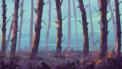 Sunset in the forest. Illustration painting