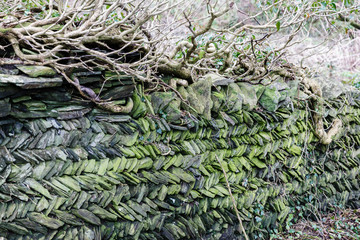 stonewall made from stonework, delimitation of territory; Gray and green stones stacked to form sloping rows.