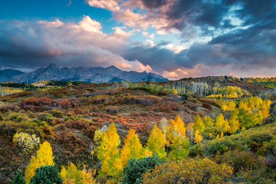 The Sneffels Range is illuminated at sunset surrounded by beautiful fall color as seen from the Dallas Divide in between the towns of Telluride and Ridgeway, Colorado.