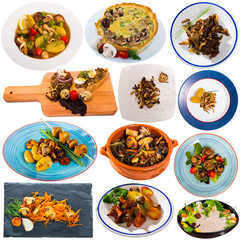 Set from tasty different mushrooms cooked with vegetables and potatoes