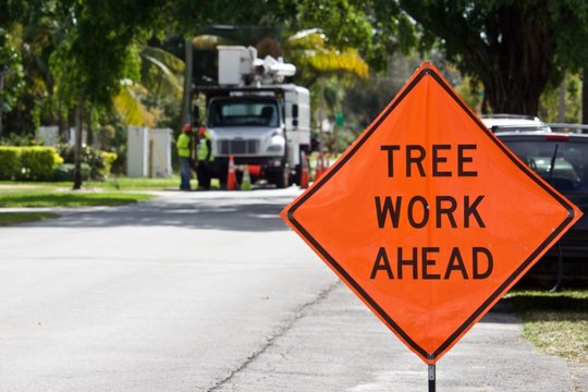 Tree Work Ahead Sign Orange information sign with black letters displayed in front of tree maintenance workers and truck. Truck and workers intentionally blurred in background