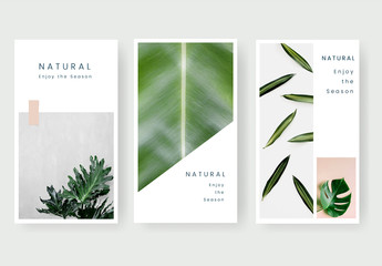 Social Media Banner Set with Botanical Accents