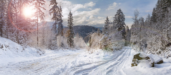 Wall Murals Gray Winter landscape, panorama, banner - view of the snowy road in the winter mountain forest
