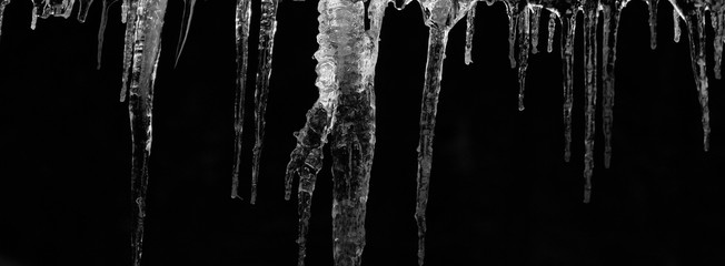 number of natural icicles on a black background. frozen water in winter. a group of dangling icicles. copy space.