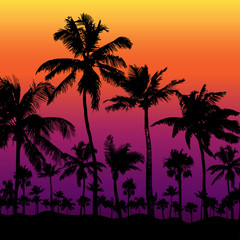 Tropical background with palm trees, vector illustration.